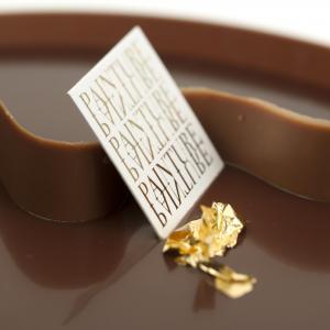 Samba chocoladetaart Painture - detail
